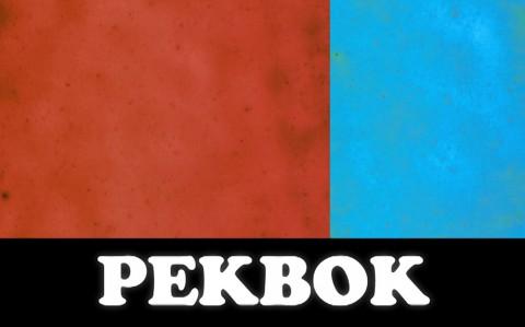 Politisk Pekbok still1 besk2